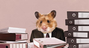 Hamster businessman sitting at desk with piles of work