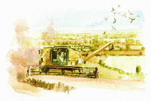 Watercolor painting of combine harvester in countryside