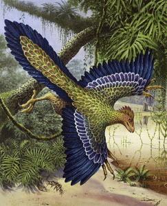 Archaeopteryx dinosaur flying