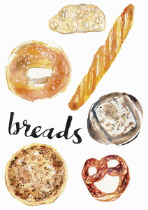Watercolour painting of different breads