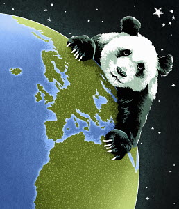 Giant panda on globe