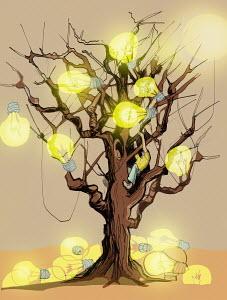 Lightbulbs at bare tree
