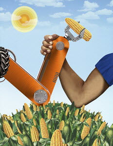 Man arm wrestling with robotic claw holding corncob over maize field