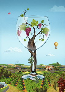 Grape vine growing inside of large wine glass in idyllic rural landscape