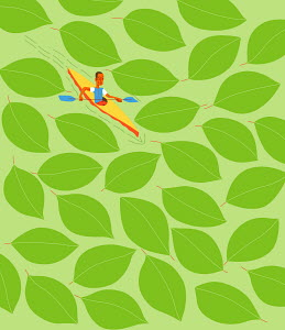 Kayaker in water surrounded by green leaves