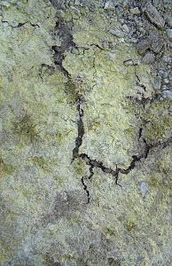 Cracking soil