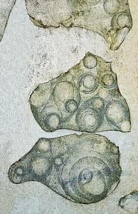 Cracks in wall revealing circular patterns