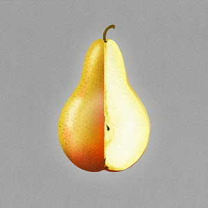 Bisected pear showing cross section