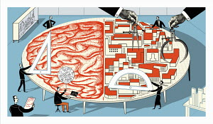 Brain and buildings are being measured on large table