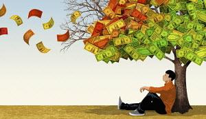 Young man sitting under dollar money tree