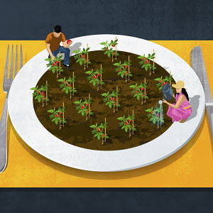 Couple gardening on large plate