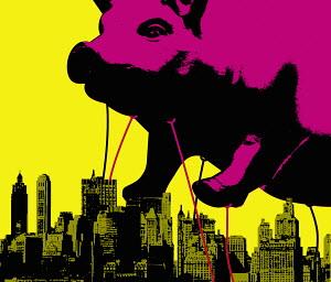 Large pig floating above city