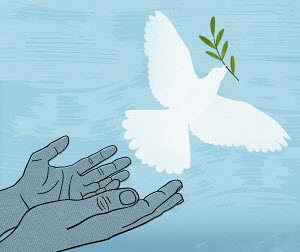 Hands releasing white dove with olive branch