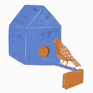 Bird with briefcase perching at nest box
