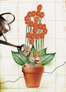 Coins and money flower