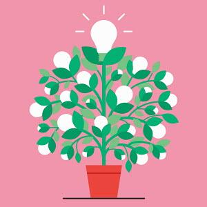 Light bulb plant