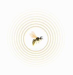 Wasp inside circle pattern