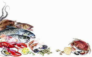 Variation of fish and seafood and white background