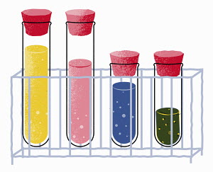Row of test tubes containing different chemicals