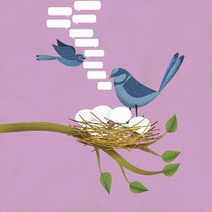 Birds tweeting with nest of speech bubble eggs