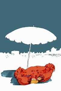 Crab reading book under beach umbrella