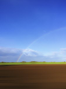 Rainbow in field
