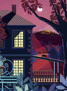 Cat walking on porch roof of a secluded house at night