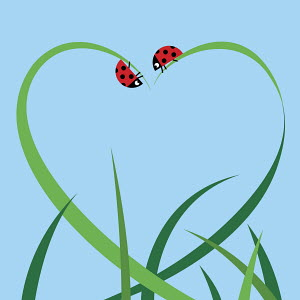 Blades of grass and ladybugs forming heart shape