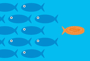 Dollar goldfish swimming in opposite direction