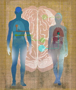 Connections between body and mind