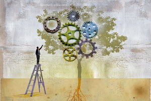 Man on step ladder reaching up to cogs growing on tree