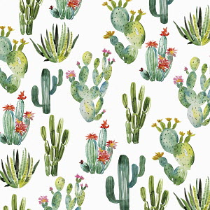 Watercolour painting of repeat pattern of cacti