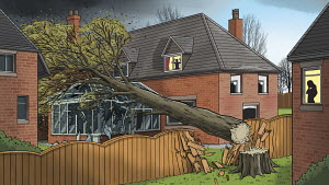 Tree falling into neighbours house in storm damage
