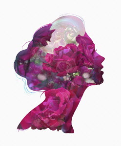 Pink floral pattern forming woman's profile