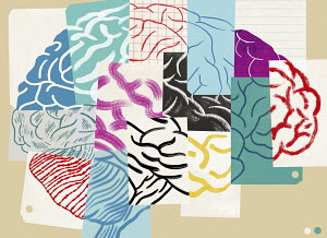 Lots of different pieces of paper forming human brain