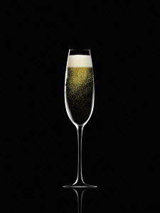 Single champagne flute against black background