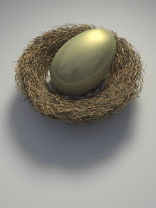 Nest with large golden egg