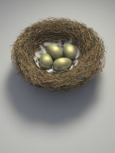 Nest with four golden eggs