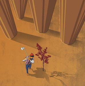 Lumberjack chopping down sapling and ignoring tall trees