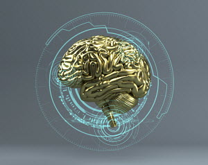 Gold brain at the centre of digital technology