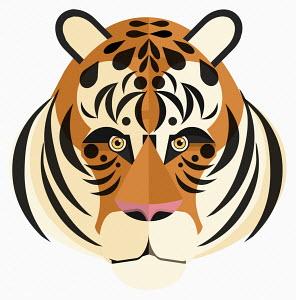 Close up of tiger's face looking at camera