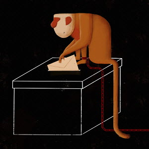Monkey on a chain voting