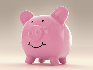 Happy fat piggy bank