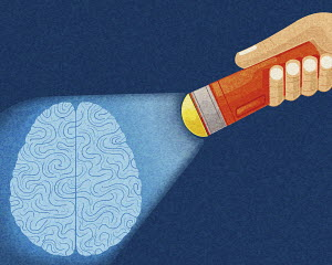 Hand shining torch on brain