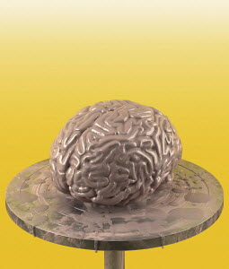 Clay brain on potter's wheel