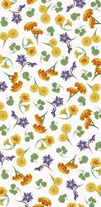 Full frame flower pattern