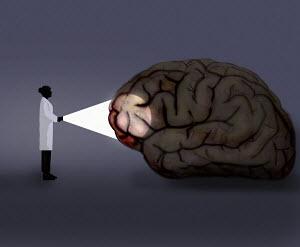 Scientist shining light on human brain