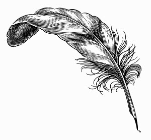 Black and white scraperboard engraving of old fashioned quill pen