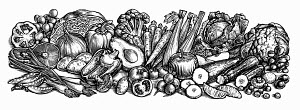 Black and white scraperboard engraving of lots of fresh fruit and vegetables