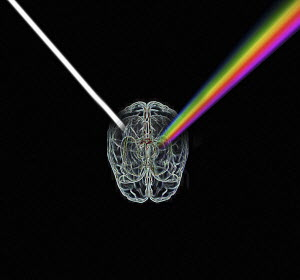 Wire brain refracting light as a prism